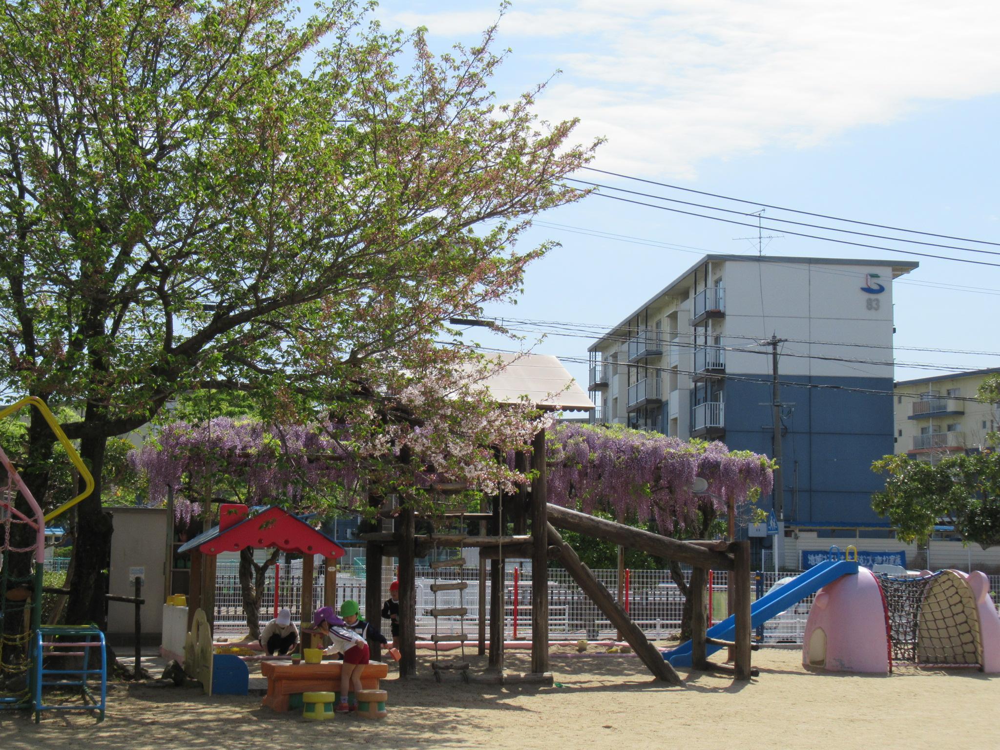 6月17日(木)の「園庭開放」中止のお知らせ